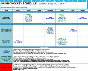 shinny hockey